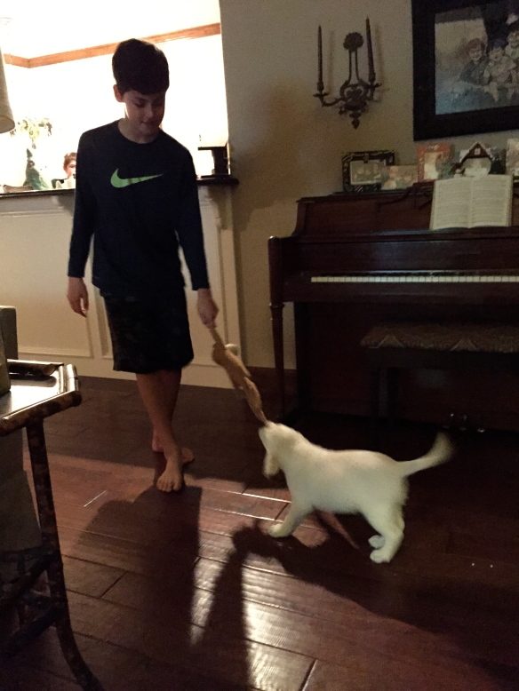 Where the piano was. I know with the cute puppy and even cute boy its secondary to the picture:)